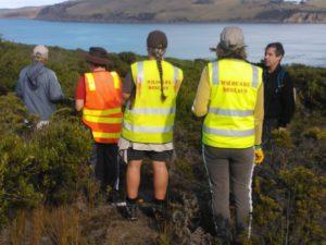 Wildcare Deslacs - Group