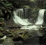 Horseshoe Falls Mt Field