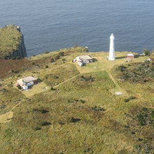 donate_lighthouse