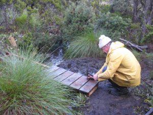 Greg building boardwalk bridge over bog.on track to Lake Seal