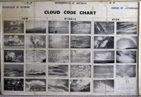 Cloud Chart from Meleleuca