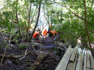 WCMV Wildcare volunteers & PWS field staff made a great team working on the replacement of the Dove Lake board walk