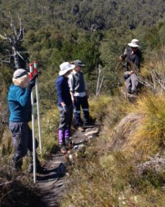 Erecting Snow Poles on the Dove Canyon Track