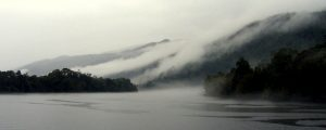 Gordon River Mist