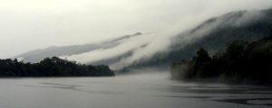 Gordon River Mist