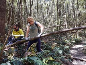 Jamie & Donna hard at work on the Mt Farrell Track (SS)