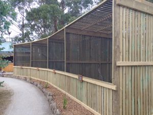 RaptorRefugeAviaries20180217_113525