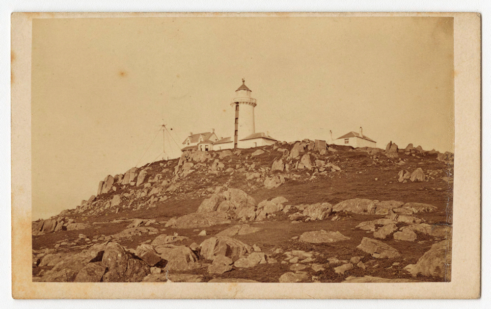Wildcare | Tasmanian Lighthouse Conference reflection