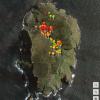 Tasman Island Weeds