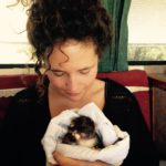 Caring for orphaned and injured wildlife