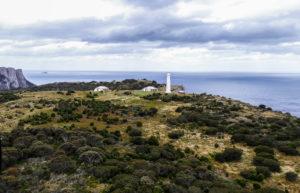 Aerial view Tasman Island & lighthouse