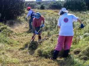 FoTI volunteers Tasman Island, 2006