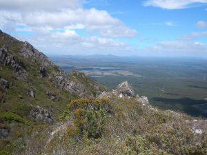 View near the summit