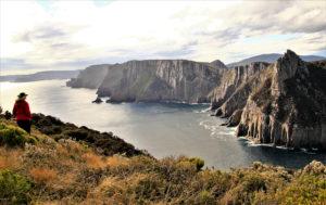 Spectacular views of Cape Pillar & the Blade e